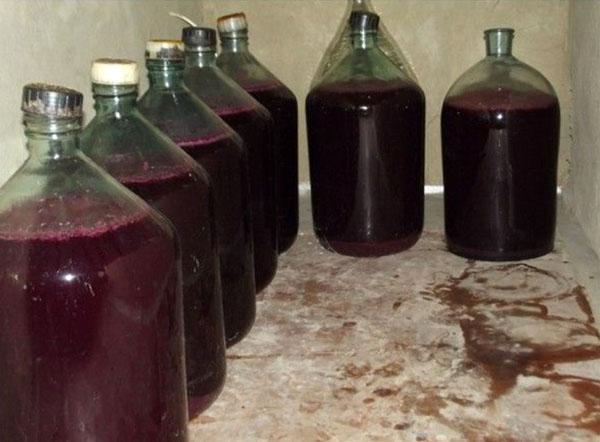 процесс выдержки вина