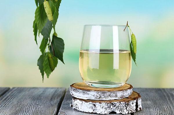 для праздничного стола березовое вино