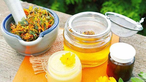 масло, мазь и настойка цветов календулы