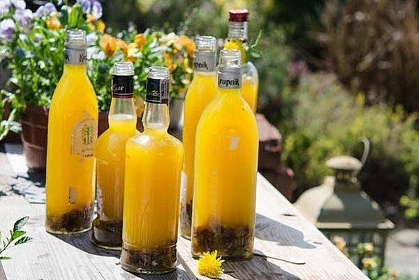 вино из одуванчиков с апельсином
