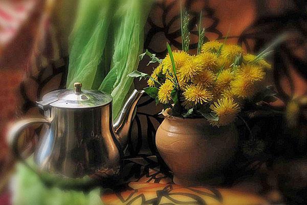 завариваем одуванчиковый чай