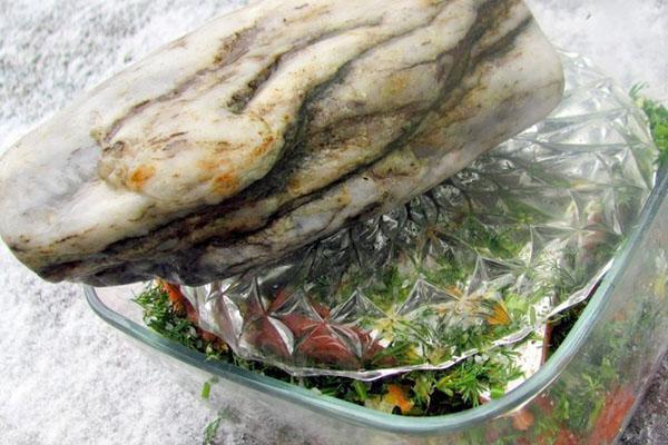 ставят рыбу под гнет