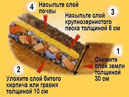 подготовка ямы для посадки ежевики Рубен