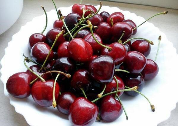 сочные сладкие плоды вишни Жуковская