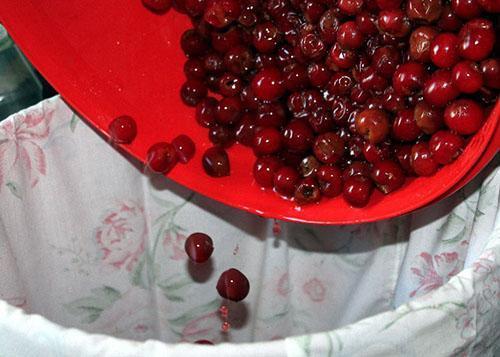 промыть вишни