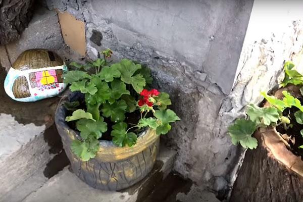 цветочный горшок из цемента