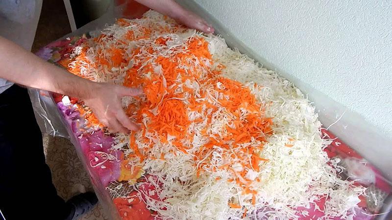 как квасить капусту в домашних условиях быстро и вкусно