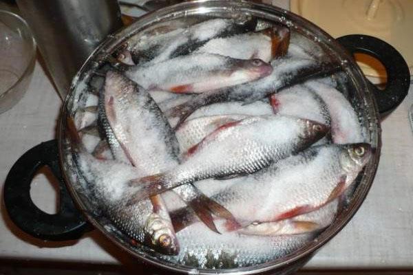 пересыпать рыбу крупной солью