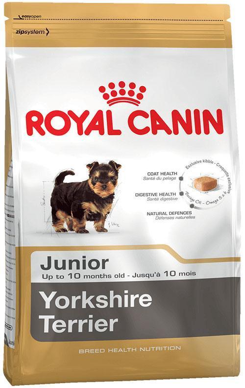 сухой корм для молодых собак породы йоркширский терьер