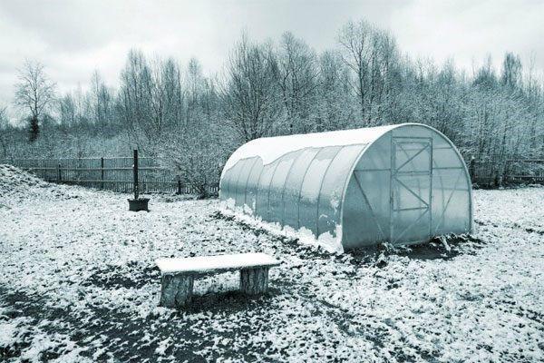подготовка парника к зиме