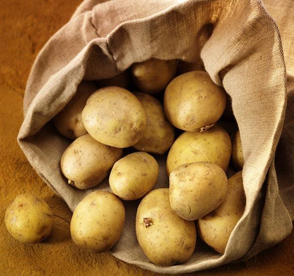 убираем картофель на хранение