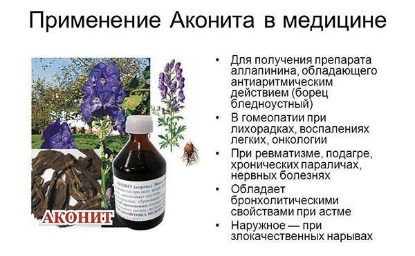 применение аконита в медицине