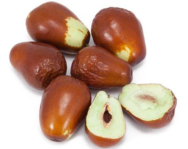 плоды зизифуса обладают полезными свойствами