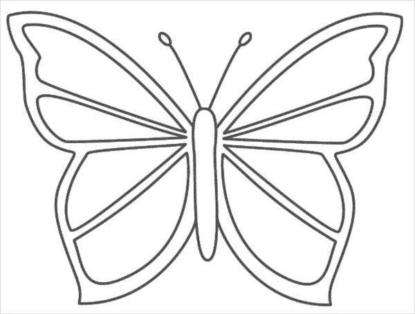 красивая бабочка