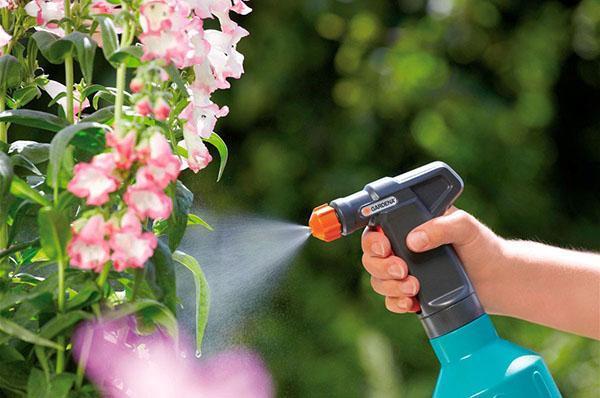 использование инсектицида калипсо в саду