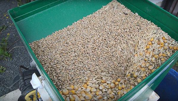 изготовление корма для птицы