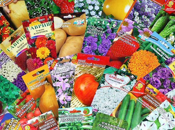 семена цветов и овощей для дачи