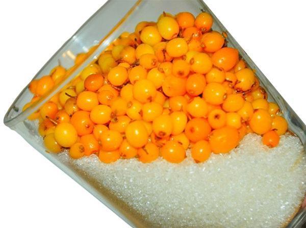 сахар и ягоды для приготовления облепихового меда