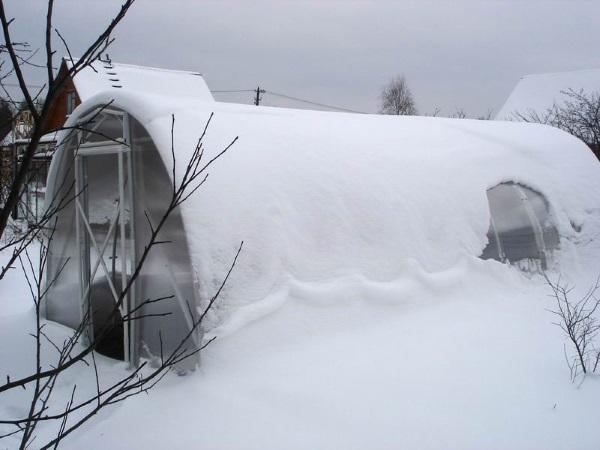 работы в теплице в январе