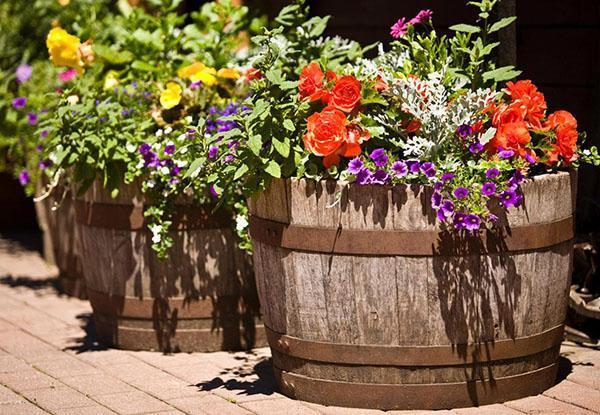 деревянные кадки для садовых цветов