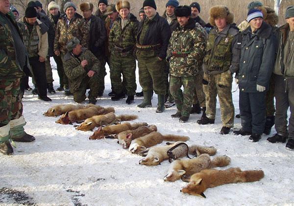 добыча охотников