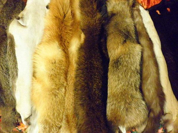 качественные шкуры лисы