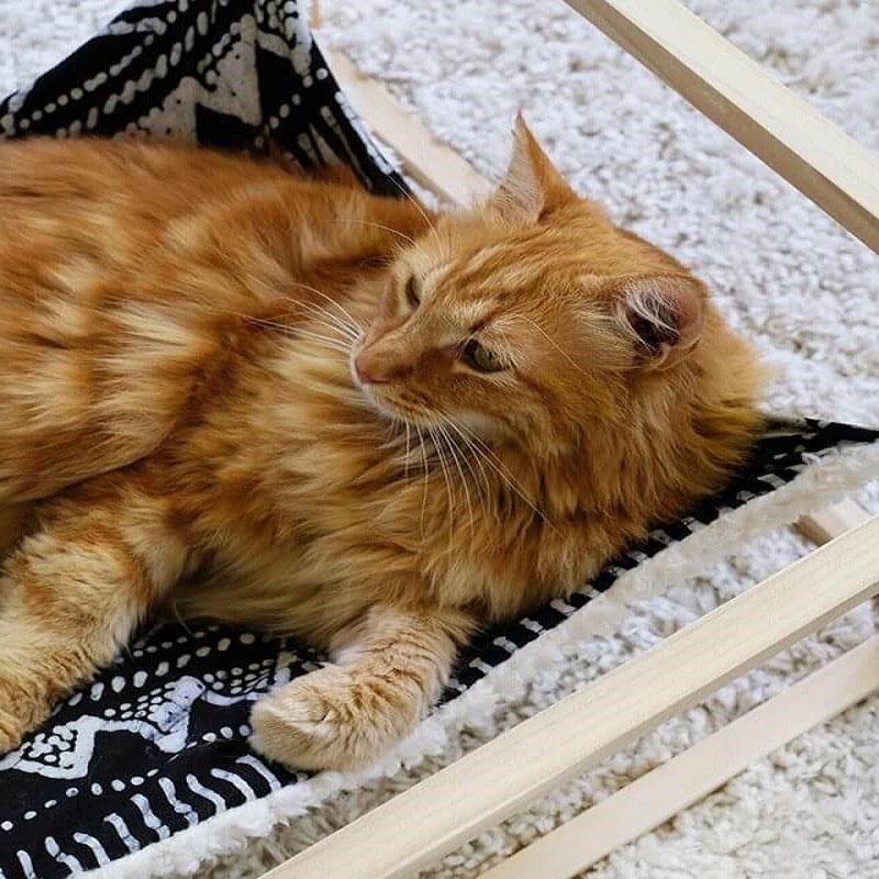 надежный гамак для кошки