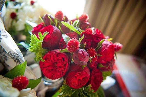 гомфрена с английскими розами