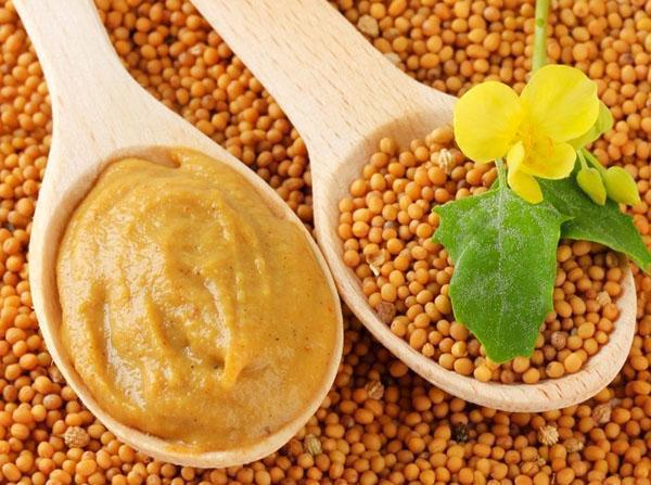 Народные рецепты лечения горчицей