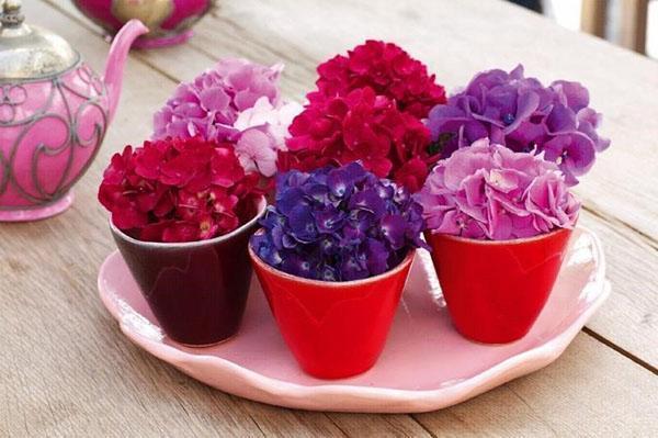 цветы гортензии на столе