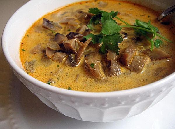 ароматный полезный суп из замороженных грибов