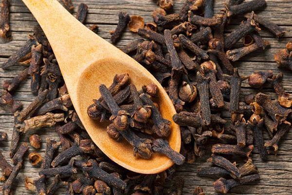 Гвоздика как пряность: лечебные свойства и противопоказания, применение
