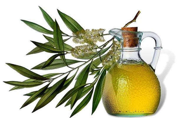 масло чайного дерева поможет снять отеки