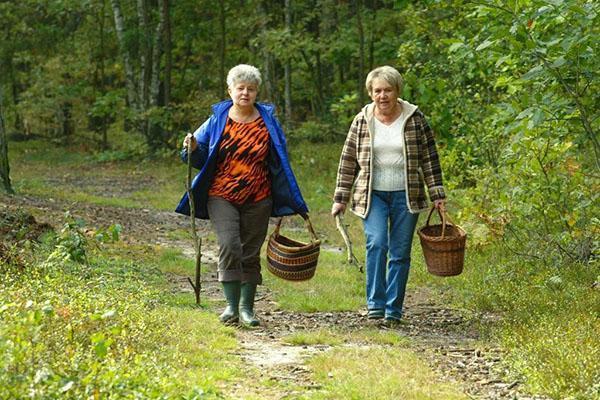 ходим в лес вдвоем