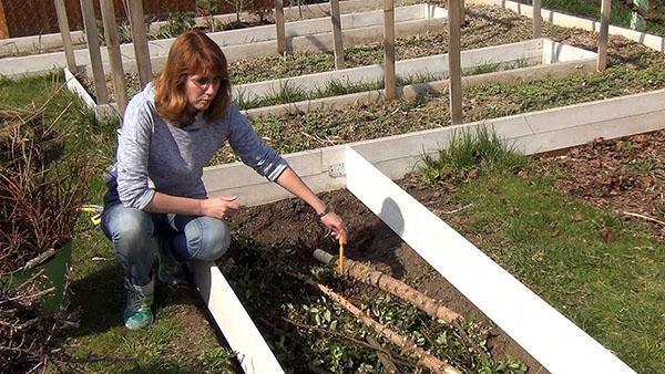 заполнение теплой грядки ветками и листвой