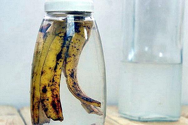 настой банановой кожуры