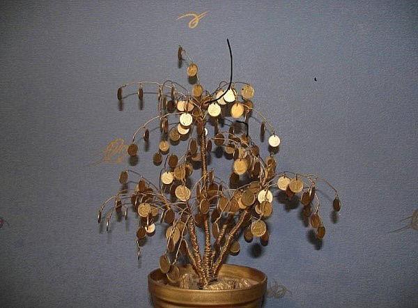 денежное дерево с ветками