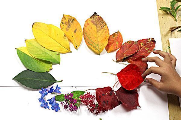 листья для поделок