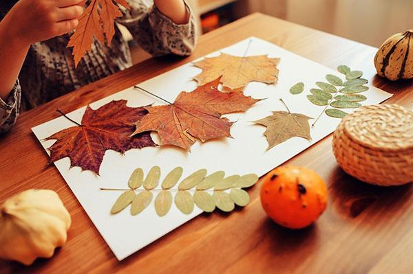 создаем картину из листьев