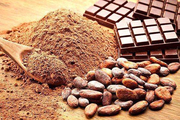 бобы, порошок и плитки какао