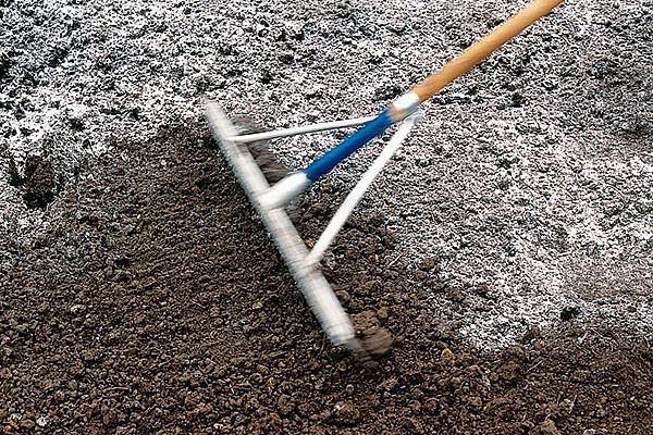 проверяем кислотность почвы
