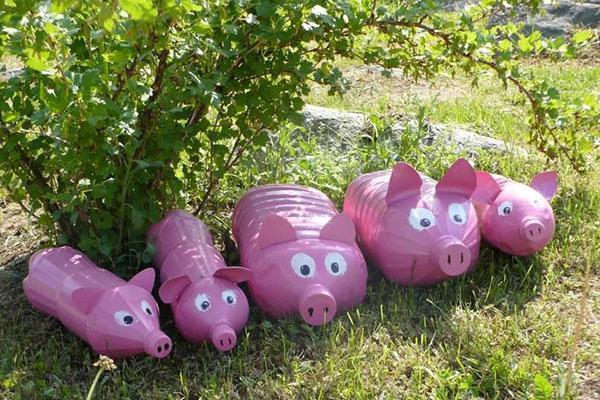 свинки в саду
