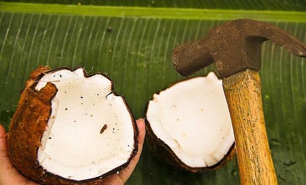 разбить кокос