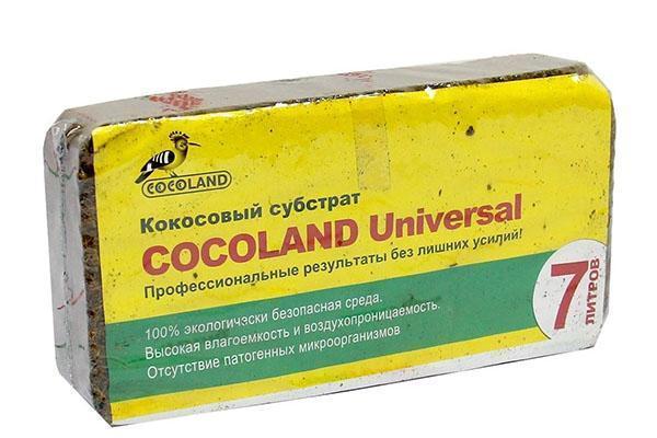 кокосовый субстрат в брикете