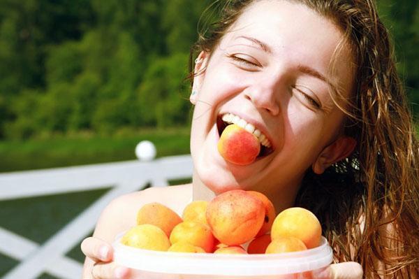 лечебные свойства абрикоса