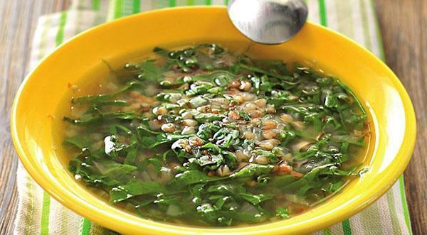 суп со снытью