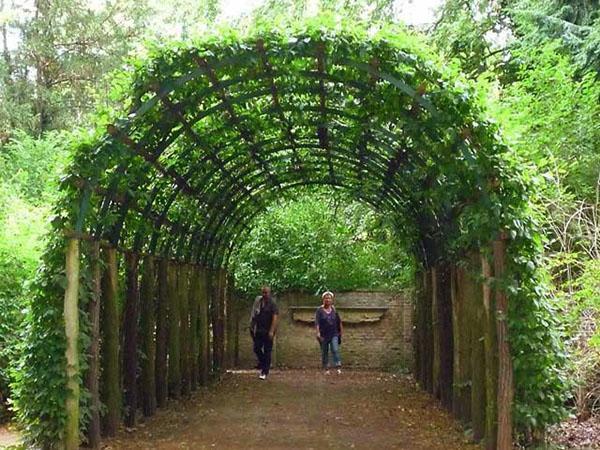 тунель из арок