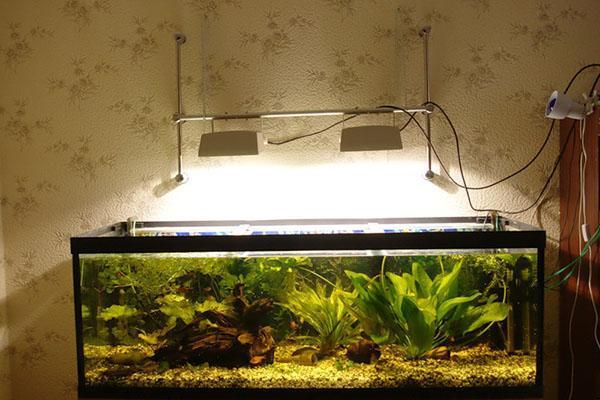 свет для растений в аквариуме