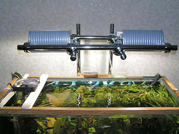дополнительное освещение аквариума