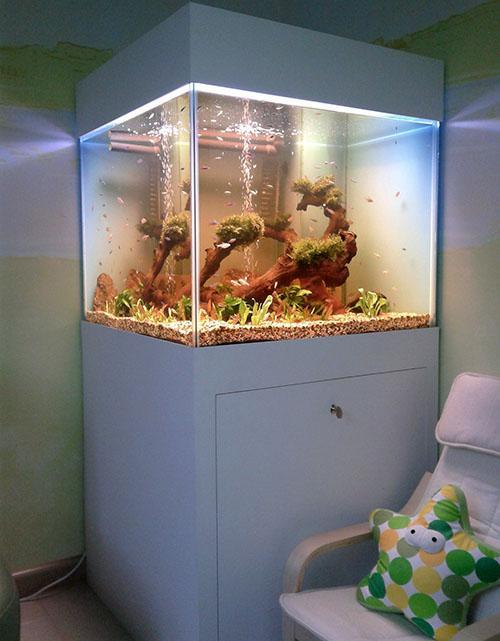 организация освещения аквариума